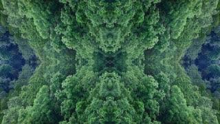 Garden of the Gods Natural Wonder