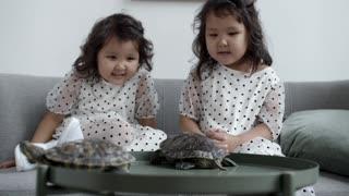 Two Little Girls Do It Turtle Style