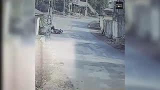 Monkeys Attack Residents