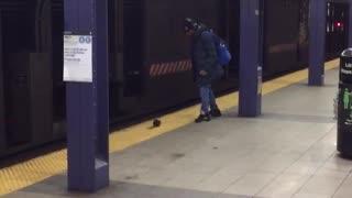 Man almost kicks subway rat
