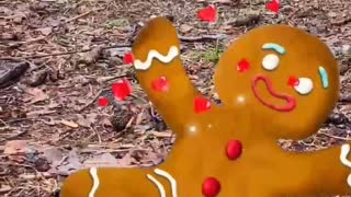 Chickens with Christmas music