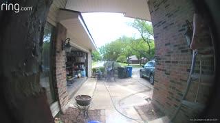 Ladder Fall Caught on Doorbell Camera