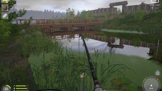 Russian Fishing 4 Old Burg Lake Grass Crap 8.338 Kg