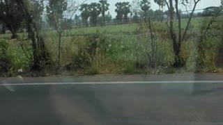 Man Kicks Car Window While Driving