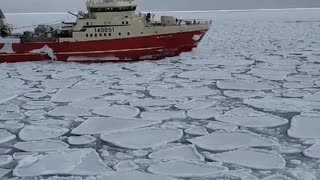 Crazy video off the coast of Labrador reveals a frozen ocean
