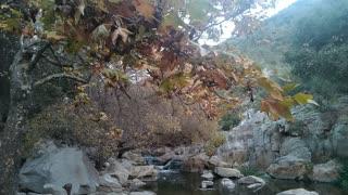 Beautiful Creek in San Diego