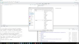 RStudio Software Basics