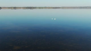 Drone flying over lake birds - With beautiful music