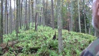 Big Woods Mountain Deer Hunting in Pennsylvania 2017