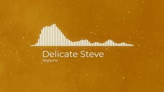 Delicate Steve Seasons