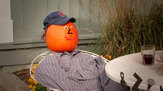 Jackson's Pumpkin People
