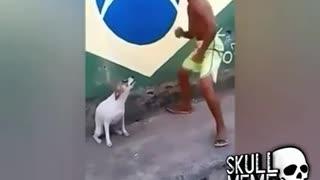 Cachorro dançando muito