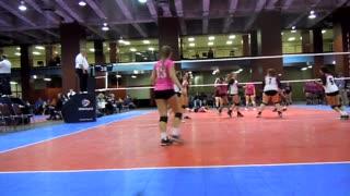 MLK Volleyball Tournament tip