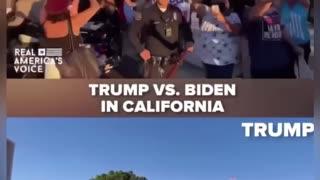 Trump vs Biden support