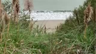Fog rolling in at the beach, so relaxing.