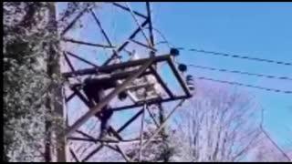 В Абхазии в результате рейдовых мероприятий за сутки обесточены крипто-фермы ощностью 25 Мегаватт