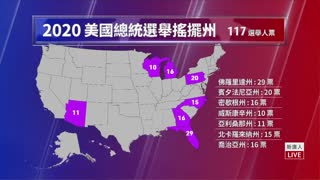 Chinese Man Observed Voter Fraud
