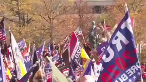 Big and Wild January 6, 2021 Protest