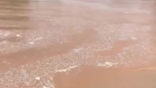 Heavy Rains Cause Intense Flooding in Outback Australia