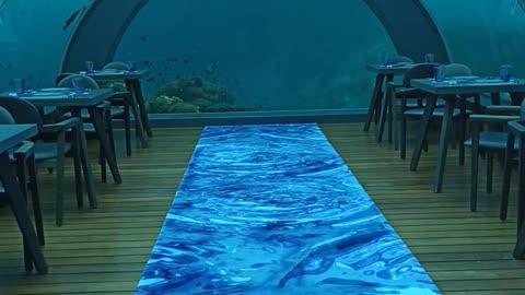 Watch this undersea restaurant