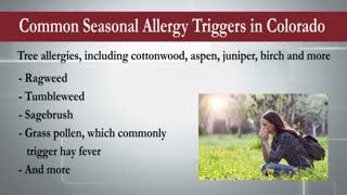 What Are Seasonal Allergies? Be Prepared for Allergy Season