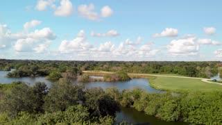 Beautiful Florida wetland