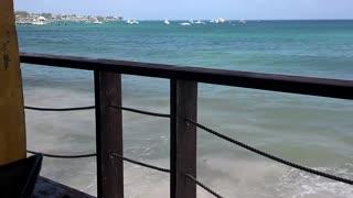 Oistins Barbados Surfer cafe