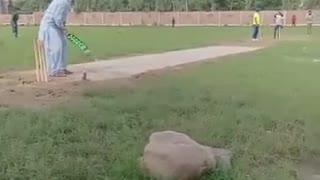 Very nice short its amezing video