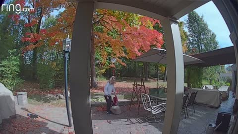 Sometimes You Just Need a Laugh | Ring Video Doorbell Captures Funny Moment