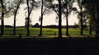 Woman Walking through a Park
