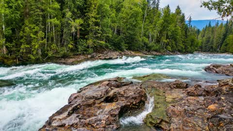 Relax Library Video 55. Blue River running thru forest.