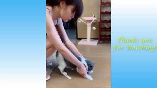 cute pet relationship