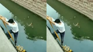 Someone Rescued The Cat that had fallen into the river