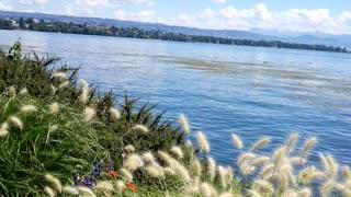 Wonderful nature of Switzerland