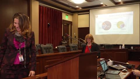 Capitol Clarity, week 2: Giddings talks federal money & Ehardt talks limit on gathering sizes