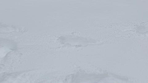 Snowpocalypse in Texas 2021
