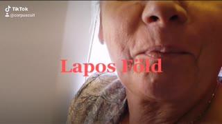 Flat Earth/Lapos föld