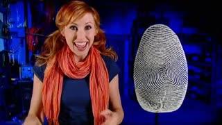 Head Rush: Crime Scene Investigator