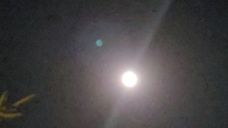 The full moon brightens the night