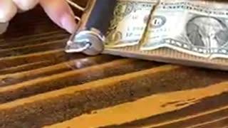 MAGIC TRICKS with MONEY!!