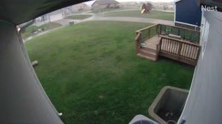 Trampolines Blow Across Yard Like Tumbleweeds