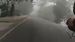 A foggy winter morning