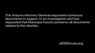 AZ Audit Volunteers Reveal Findings - DISTURBING Elections Irregularities Discovered.