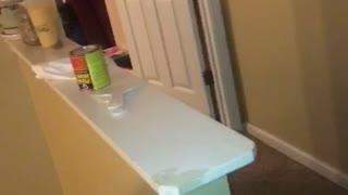 Funny Great Dane Runs Laps around House