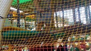 Парк дети играют