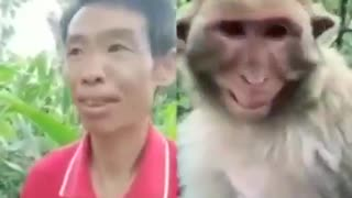 Funny videos I can't believe this