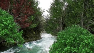 Relax Library: Video 47.Fast Moving River . Relaxing videos and sounds