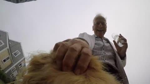 Wedding footage through the eyes of a dog