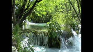 Best Nature sounds//beautiful nature.