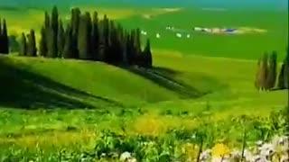 Landscapes beauty